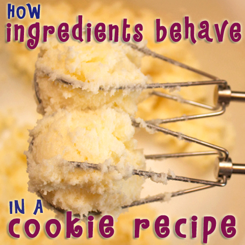 How Ingredients Behave In Cookie Recipes