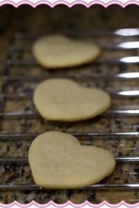 Sugar Cookie Experiment Cookies