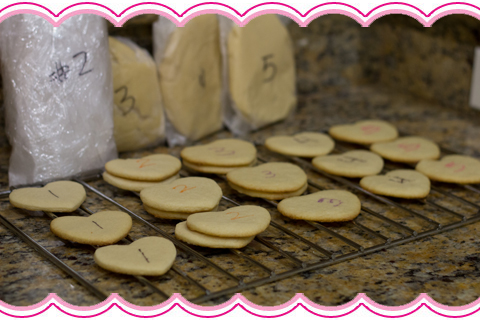 Sugar Cookie Experiment Batches