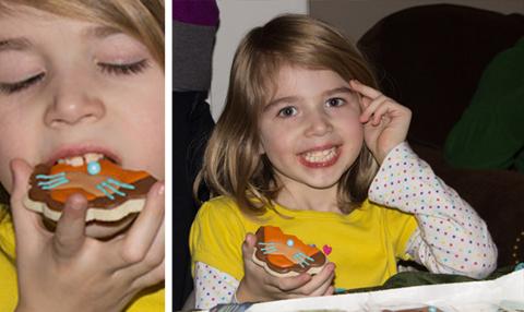Lion Cookies - sugarkissed.net
